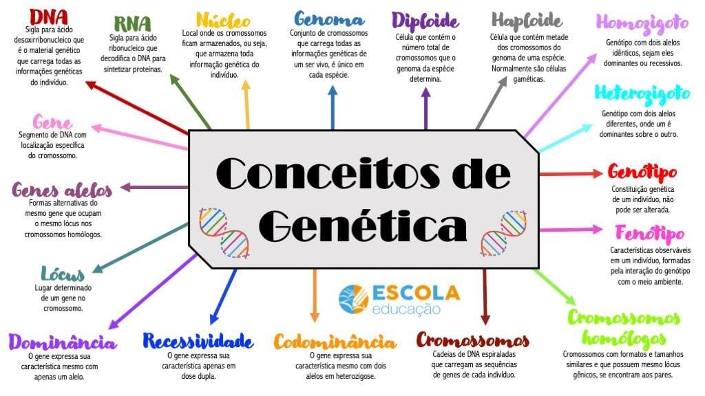 Mapa mental - Conceitos básicos de genética
