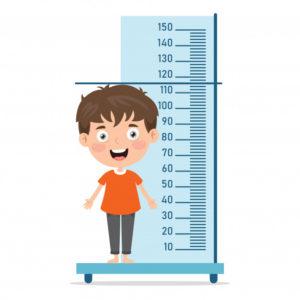 Medidas de comprimento - altura