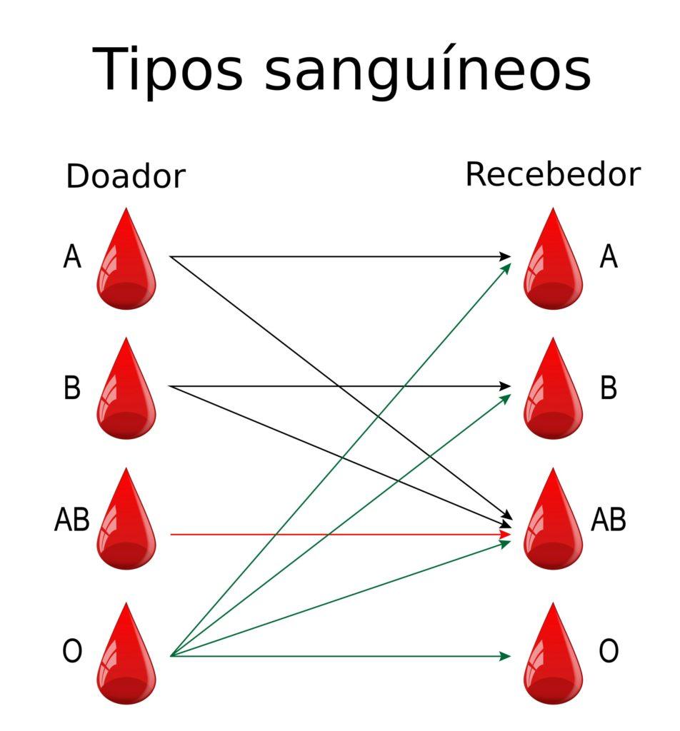 Tipos sanguíneos - Doadores e receptores