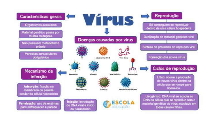 Mapa mental - Vírus