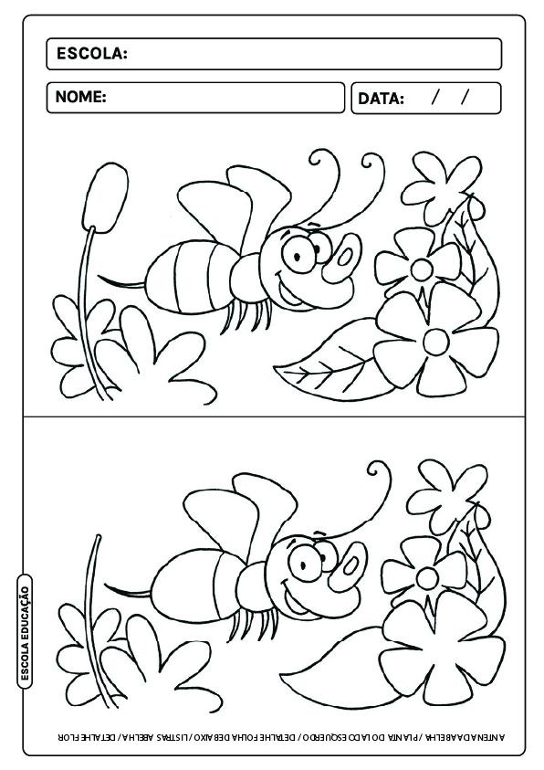 Jogo dos erros para imprimir e colorir