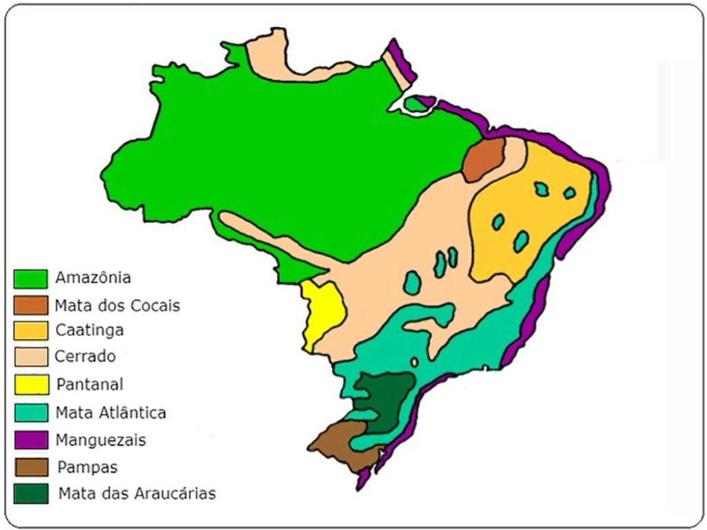 Mapa Ecossistemas Brasileiros