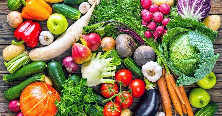 Alimentos de origem vegetal