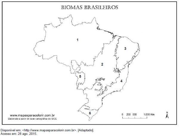 Exercício - Biomas brasileiros