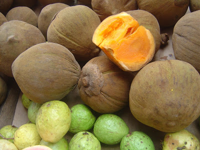 Fruta Sapota