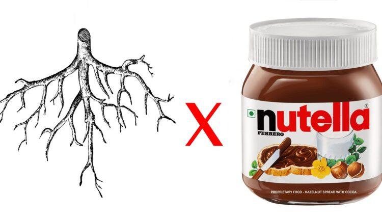 Raiz vs Nutella