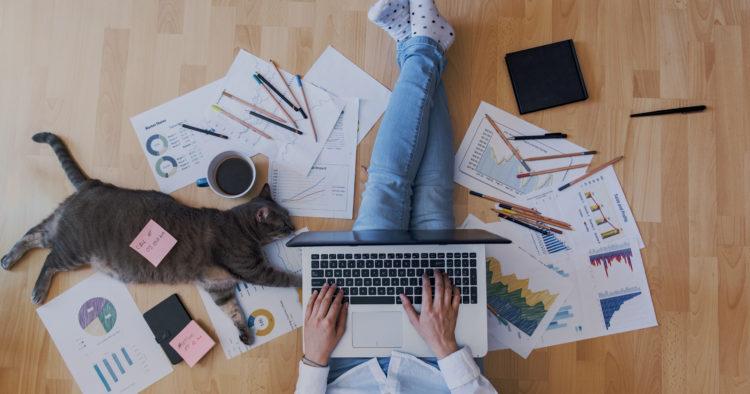 Novas oportunidades de trabalho Home Office - Expansão Brasil
