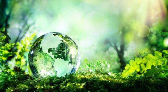 Meio Ambiente e temas Tranversais